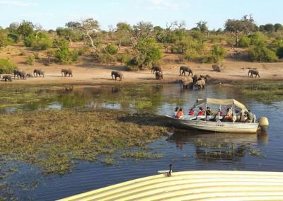 Bootstour im Chobe Nationalpark