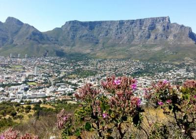 Tafelberg, Kapstadt