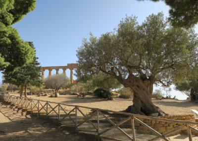 Archäologischer Park Tal der Tempel, Foto: Günter Hellwig